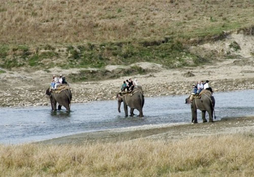 elephant safari jim corbett